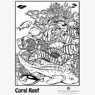Coral Reef Coloring Pictures - Coloring Home | 310x310