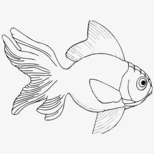 Seafood Drawing Free Clipart Ikan Bandeng Vector Png Transparent Cartoon Free Cliparts Silhouettes Netclipart