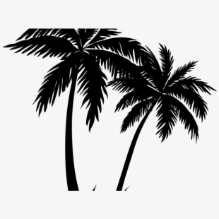 The Best Vaporwave Palm Tree Png Pictures