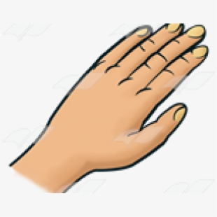 And White,five,fingers, - Clip Art Hand - Png Download - Full Size Clipart  (#658682) - PinClipart