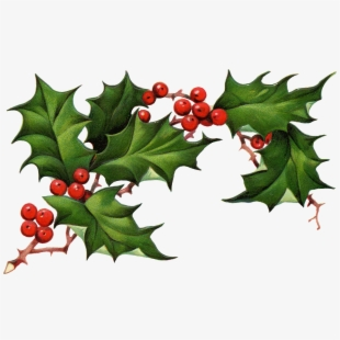 Christmas Holly Border Free Clipart Free Clip Art Images - Christmas Holly  Clipart Free, HD Png Download , Transparent Png Image - PNGitem