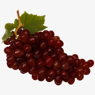 Grape 0 Clipart Red Wine Grapes Png Transparent Cartoon